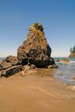 Rock Pinnacle on an Ocean Beach Stock Image