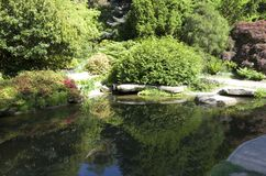 Rock, pond, carp fish in Kubota garden Royalty Free Stock Photography