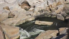 Rock pool - Augrabies waterfall stock video