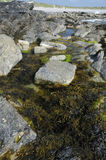 Rock Pool Stock Photos