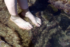 Rock Pool Feet Royalty Free Stock Images