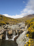 The rock pool. Rock pool in the mournes Ireland Stock Photography