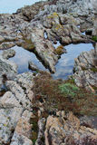 Rock pool with reflections Stock Photo