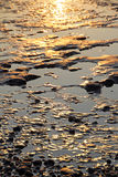 Rock pool reflections Royalty Free Stock Photo