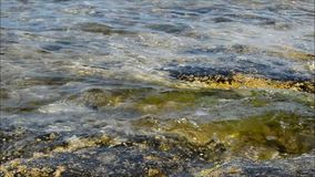 A Rock Pool At The Waters Edge. stock video