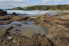Rock pools at Anchor Bay Royalty Free Stock Images