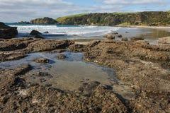 Free Rock Pools At Anchor Bay Royalty Free Stock Images - 43888719