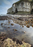 Rock pools and cliffs Royalty Free Stock Image