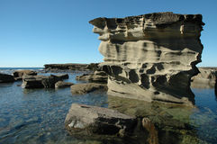 Rock Pools Sydney Stock Image