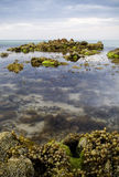 Rock pools with time-lapse water Stock Photo