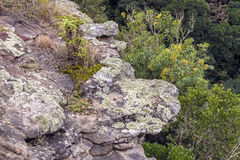 Rock Precipice Extending Out Over Deep Gorge. Rock precipice extending out over natural vegetation and deep gorge in South Africa Stock Images