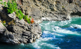 Rock with rapid, Paradise places in Sount New Zealand Stock Images