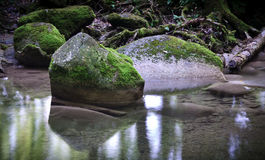 Rock in the river. A rock on a calm water with foam Royalty Free Stock Photos