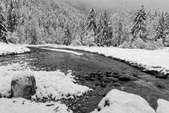 Rock and the river during winter in Chartreuse Black and white royalty free stock images