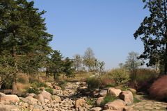 Rock Riverbed. A rock riverbed in a Shanghai garden in China that is surrounded by trees royalty free stock photos