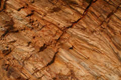 Rock's surface Royalty Free Stock Photos