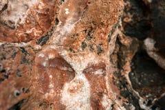 Rock salt on stones Royalty Free Stock Photo