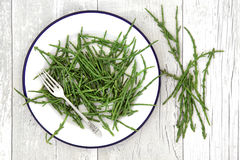 Rock Samphire Healthy Food. Rock samphire vegetable health food on a plate with silver fork and loose over white ditressed wooden  background. Salicornia Stock Images
