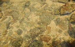 Rock and sand on river ground with clear water Royalty Free Stock Photo
