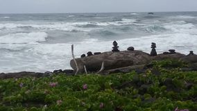 Rock Sculptures. Photo of rock sculptures on a beach in Hawaii Stock Photography