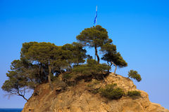 Rock in the sea. With pine trees and flag on a beautiful sunny day stock images