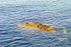 Garitsa Bay, Corfu, Greece. Rock formations in Garitsa Bay, Corfu, Greece Royalty Free Stock Photo