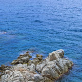 Rock in the sea. The rocky coastline. Rock in the sea Stock Images