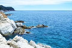 Rock in the sea. The rocky coastline. Rock in the sea Royalty Free Stock Photos