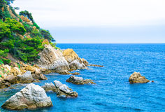 Rock in the sea. The rocky coastline. Rock in the sea. Trees on the mountain Royalty Free Stock Photo