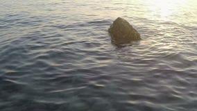 Rock in sea stock video
