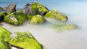 Rock at the sea Stock Photos