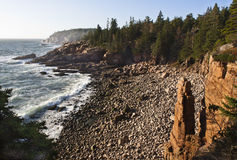 Rock Sentinel on the coastline of the Acadia National Park in Maine. The rock tower is next to a rocky beach where waves crash onto the shoreline while pine Stock Photography
