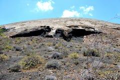 Rock, Shrubland, Ecosystem, Vegetation royalty free stock images