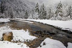 A rock, a river flows and firs. A rock on the side of a river and firs in a winter landscape of French Alps Royalty Free Stock Photo