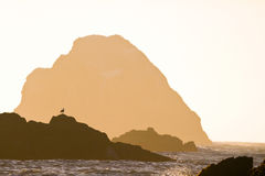 Rock silhouettes, Oregon coast sunset Royalty Free Stock Photo