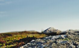 Rock and Sky Background Texture Royalty Free Stock Image