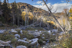 Rock Slide in the Adirondack High Peaks Stock Photography