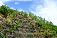 Rock Slope Royalty Free Stock Image