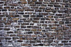 Rock solid texture from Poienari Fortress Royalty Free Stock Photo