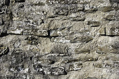 Rock solid texture Stock Image