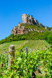 The Rock Of Solutré and wine yard's, Burgundy, France Stock Photography