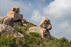 Rock som ser som en valp royaltyfria foton