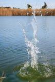 Rock splash in water. Rock splash in lake water royalty free stock image