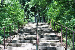 Rock Stairs In Woods Royalty Free Stock Images