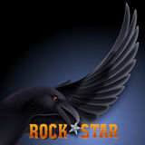 Rock star Royalty Free Stock Image