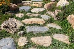 Rock stenlade och blommar banan Arkivbild