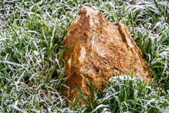 Rock stone in frozen grass Stock Photography