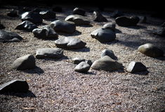 Rock or stone garden with large and middle size stones stock photos