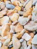 The rock stone and gravels. Sea shell, rock stone and gravels, natural texture background Royalty Free Stock Photo