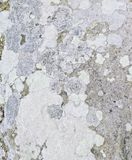 Rock sandstone texture Royalty Free Stock Photography